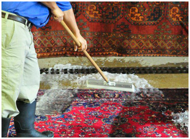 Hadeed Carpet Cleaning Axiomatica Org